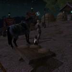 Лошадь, а может ты спасешь наш курятник?